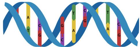 DNAcelluloid