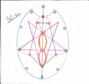 shakticlusterstructure